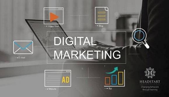 Digital marketing təlimi başlayır - 1
