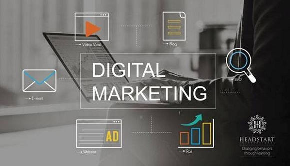 Digital marketing təlimi başlayır - 1