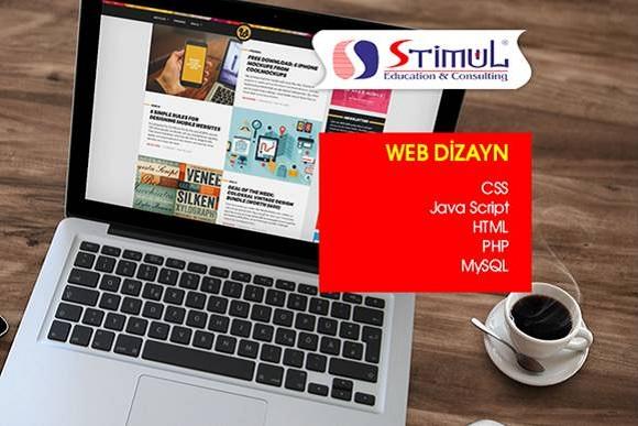 Web Dizayn proqramlarını bizimlə öyrənin - 1