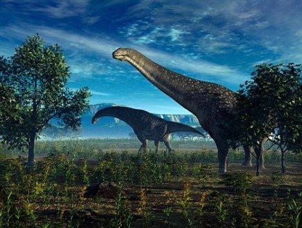 Dinozavrların Antarktika ilə nə əlaqəsi var? - 2